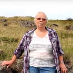 Dáinn við túngarðinn